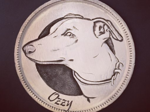 Ozzy the Whippet